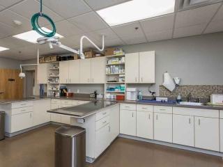 Work Area at Jefferson Veterinary Hospital